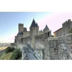 Château comtal de la Cité...