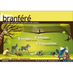 Branfere