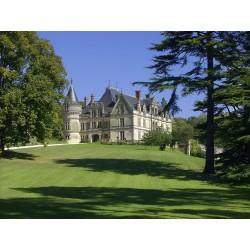 Parc et jardins du Château...