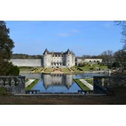Parc du château de La Roche