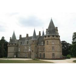Château et Parc de...