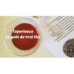 Txperience - thés et tisanes