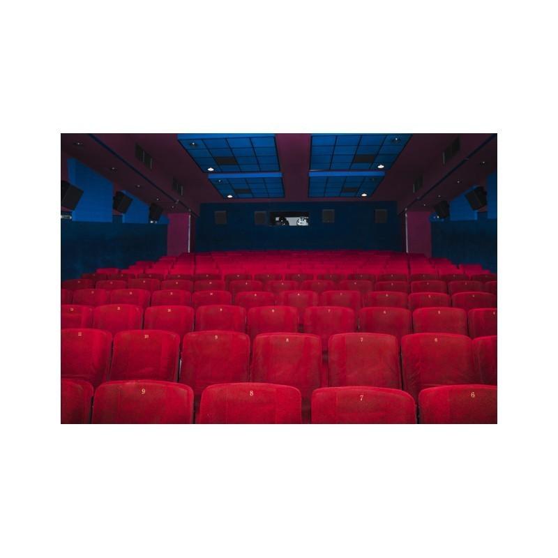 Cinéma : Rouge et Noir - Place des salaries